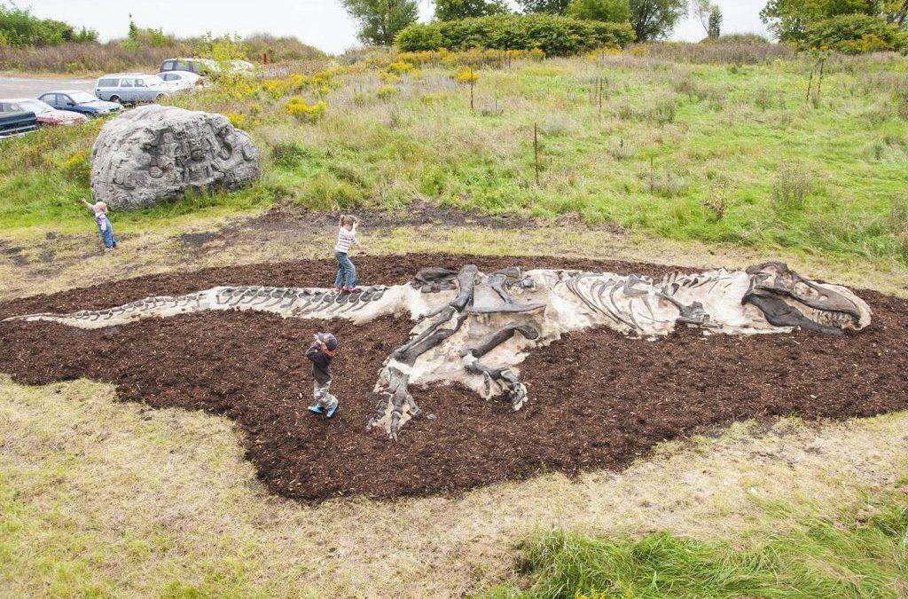 Dinosaur themed playground | Henderson Recreation